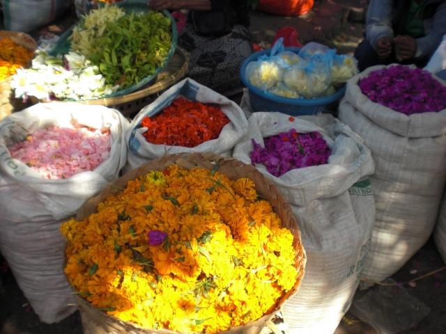 チュナンのお供え物に使う花 種類