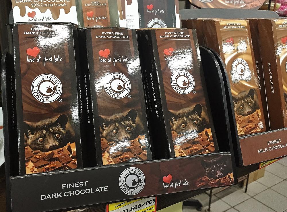 ジャコウネコ チョコレート